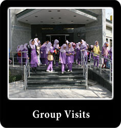 Group-visits-en